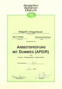 APD/R Urkunde Jeffrey
