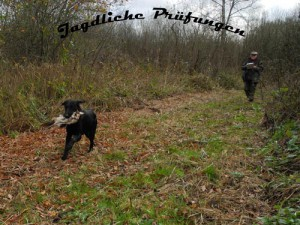 JagdlichePruefungTitel