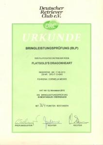 Urkunde BLP 2015