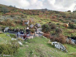 Dartmoor 2018